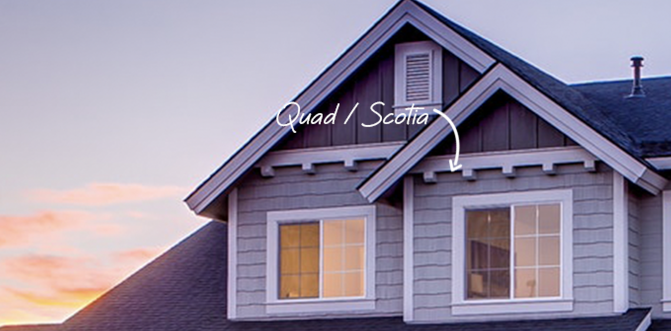 quad scotia